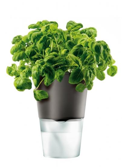 Горшок для растений с естественным поливом Herb Pot Small 3