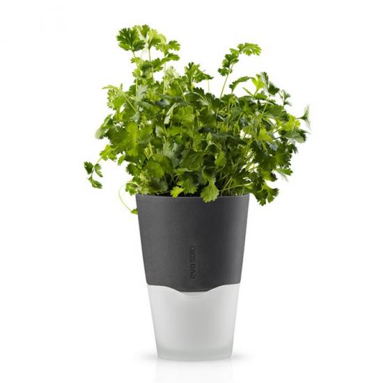 Горшок для растений с естественным поливом Herb Pot Small 1
