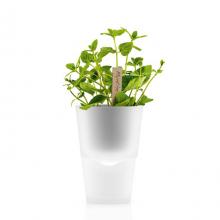 Горшок для растений с естественным поливом Herb Pot Small