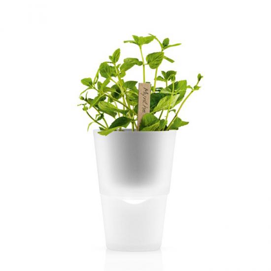 Горшок для растений с естественным поливом Herb Pot Small 4