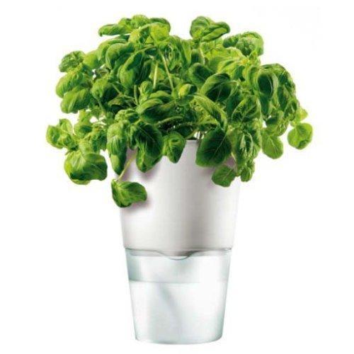 Горшок для растений с естественным поливом Herb Pot Small 2