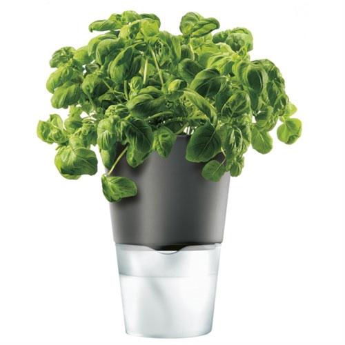 Горшок для растений с естественным поливом Herb Pot Large 2