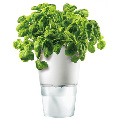Горшок для растений с естественным поливом Herb Pot Large 3