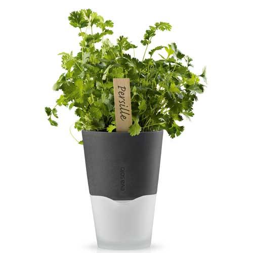 Горшок для растений с естественным поливом Herb Pot Large 4